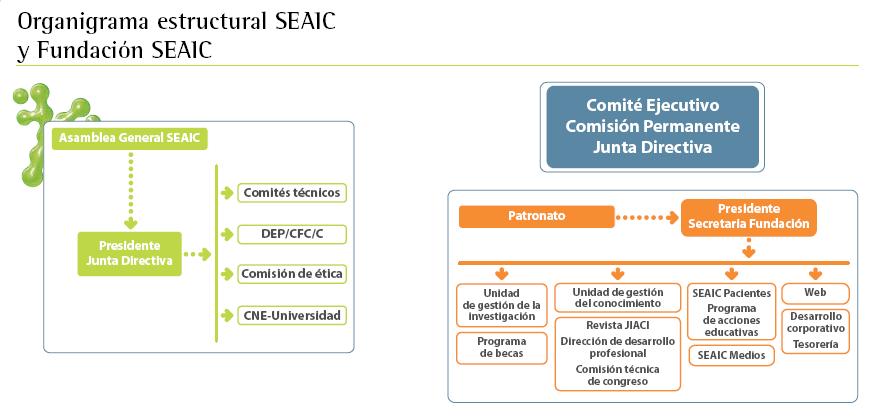 Organigrama estructural de la SEAIC y la Fundación de la SEAIC
